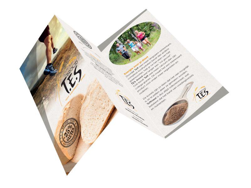 T.E.S.-folder1