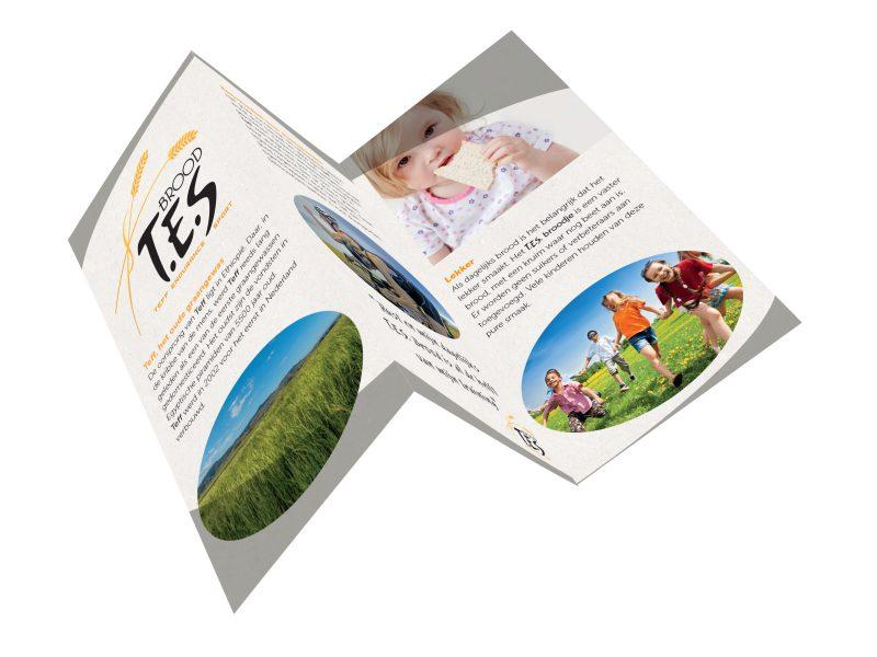 T.E.S.-folder2-2