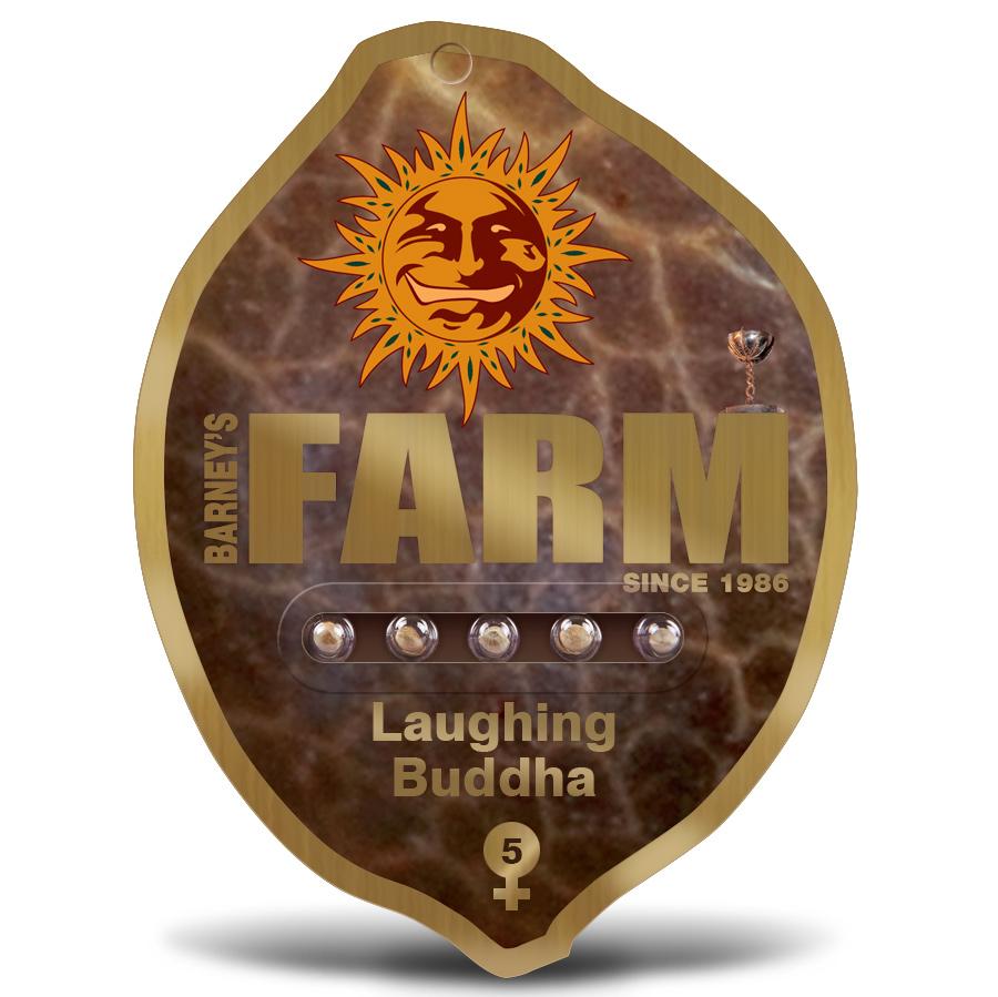 laughing-buddha-pack5