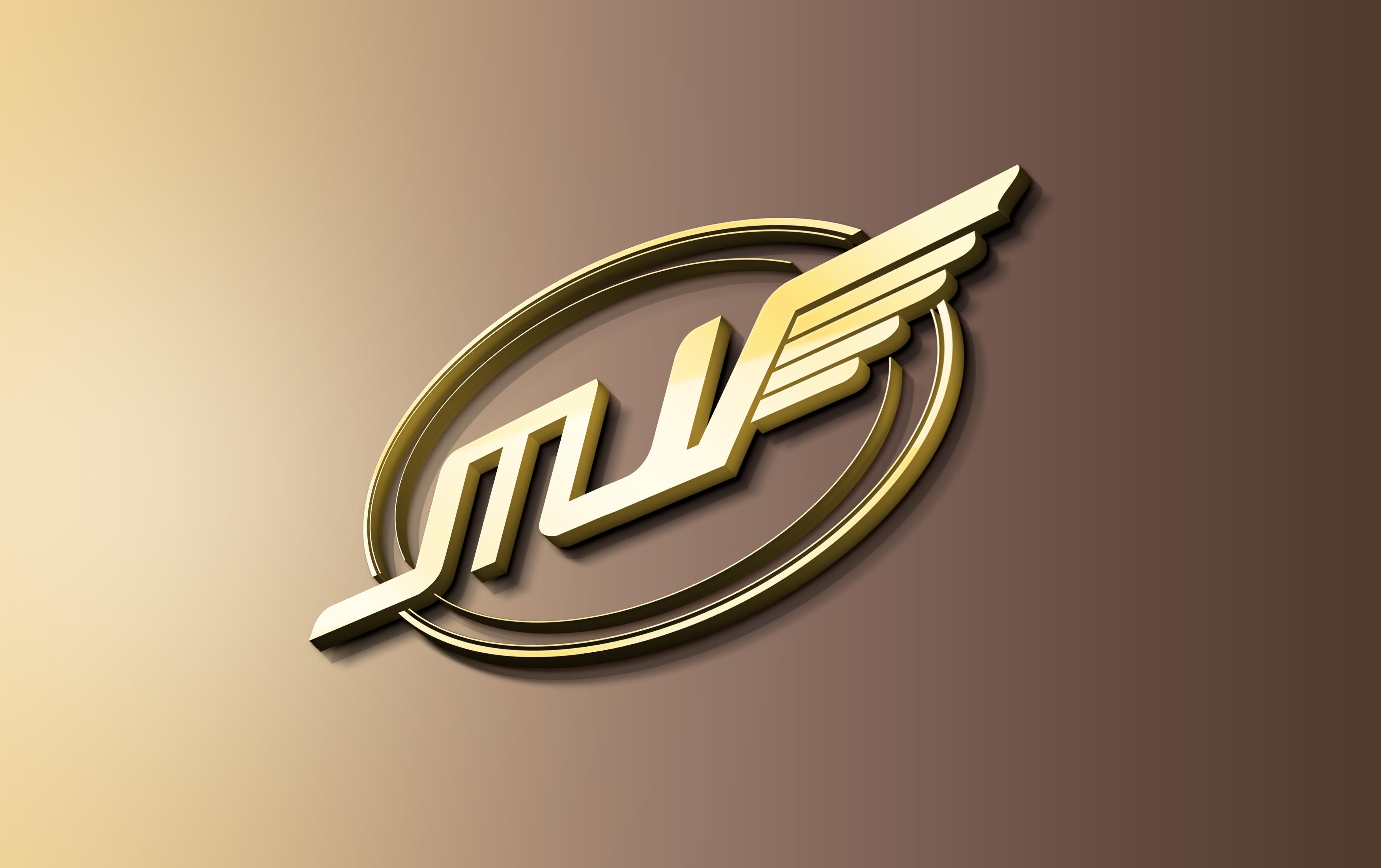 wall-logo-mv